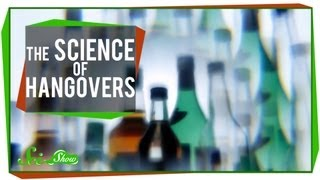 The Science of Hangovers