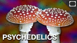 Could Psychedelic Drugs Be Good For You?
