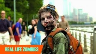 Prions: The Real Zombie-Makers