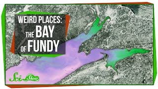 Weird Places: The Bay of Fundy