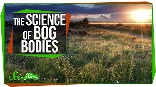 Chemistry & Corpses: The Science of Bog Bodies