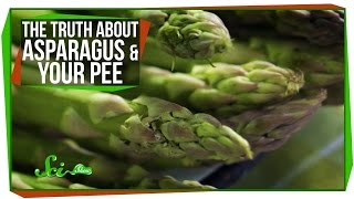The Truth About Asparagus and Your Pee